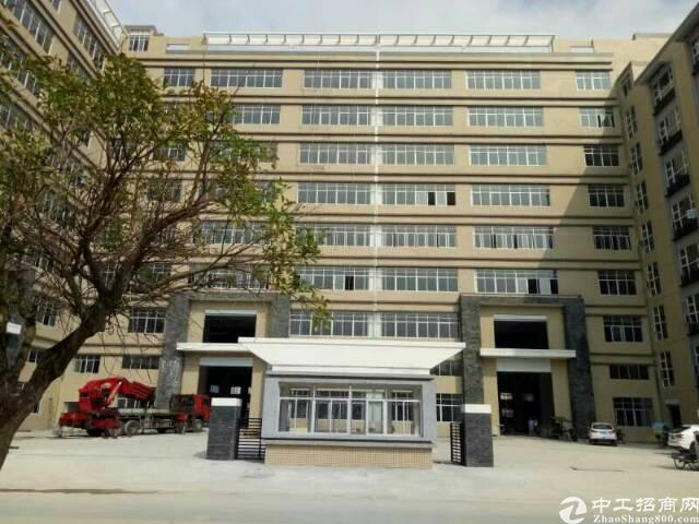 黄江全新红本独院厂房招租15000平方