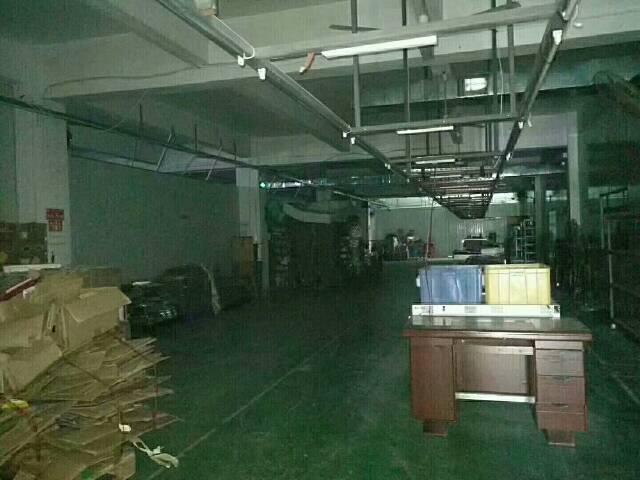 大王山楼上带装修厂房1000平方招租-图4