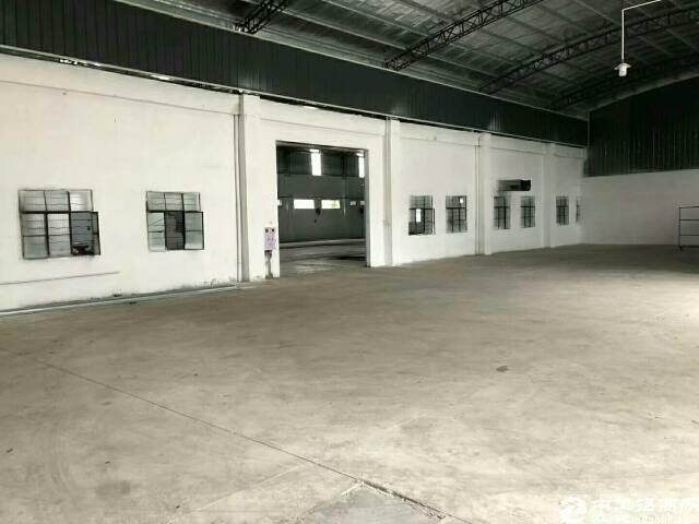 新出独门独院单一层厂房滴水7米。厂房5600平方