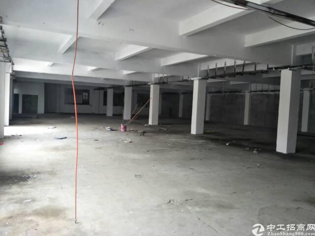 清溪原房东独院厂房14000平方招租可分租