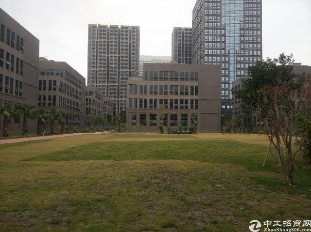 松岗新出红本厂房11栋带红本每栋2600平方米低价招租