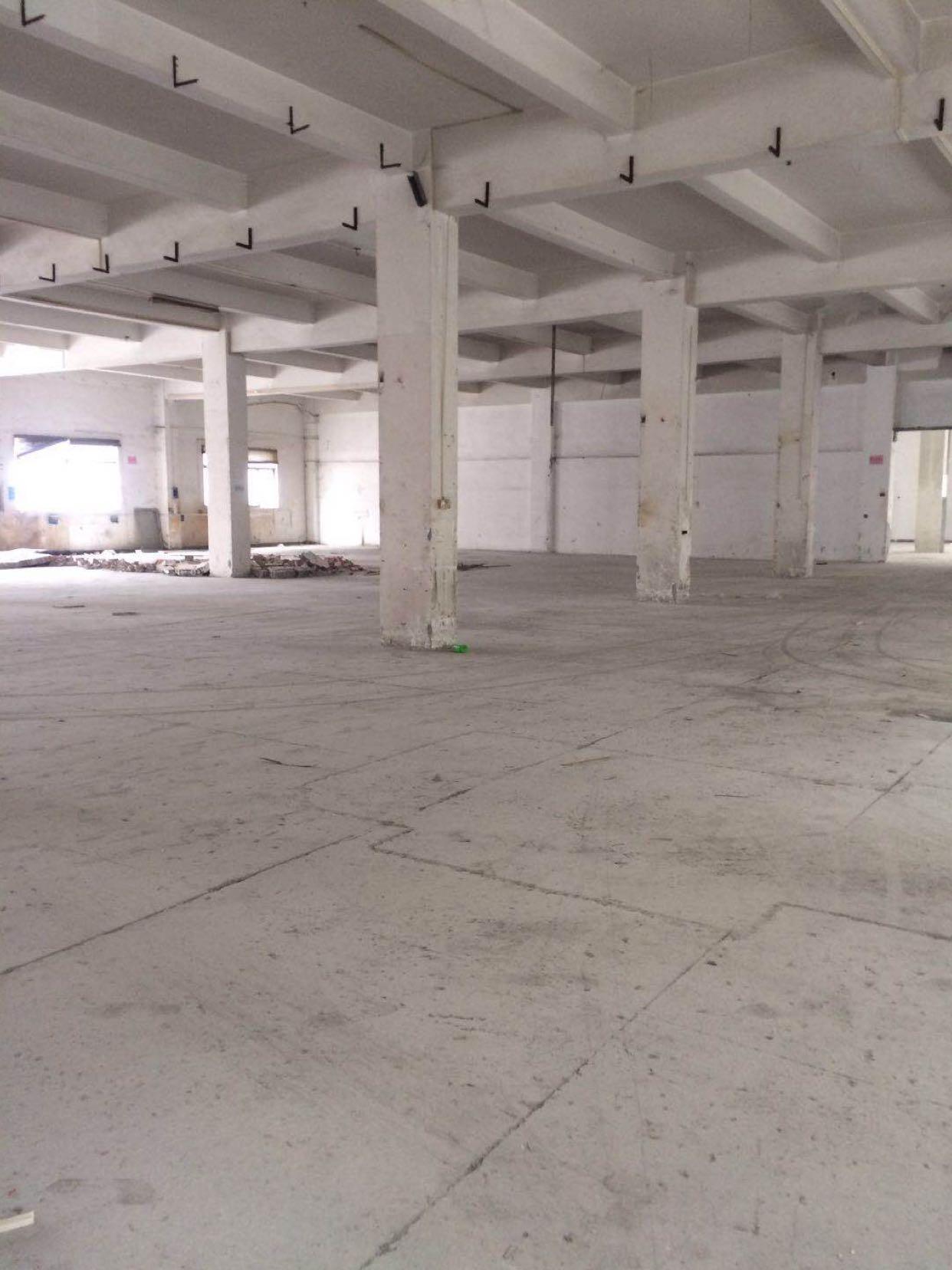 东莞市新出标准厂房一楼2200平方,6米高,电管够