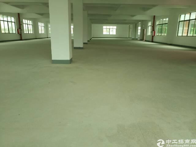 惠州新圩原房东高速出口独院3万平米厂房出租