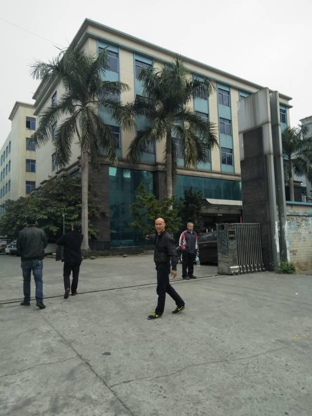 广州市新塘镇独院厂房交租-图2