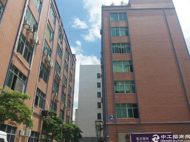 龙华大浪新出楼上400平带吊机口厂房出租