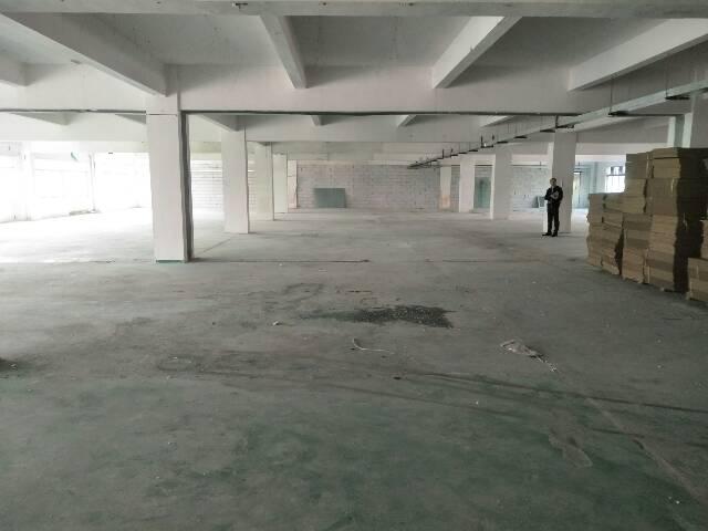 厂房招租-图2