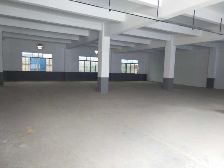 厚街镇三屯村新出现成水电装修一楼厂房1200平方米出租