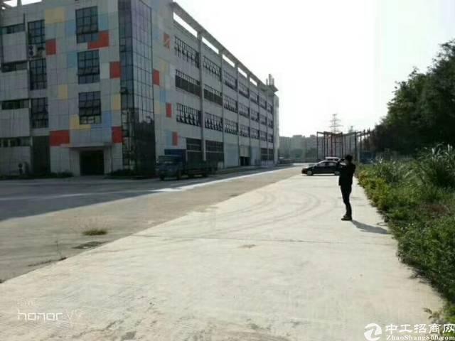 独门独院带红本28000平米厂房出租