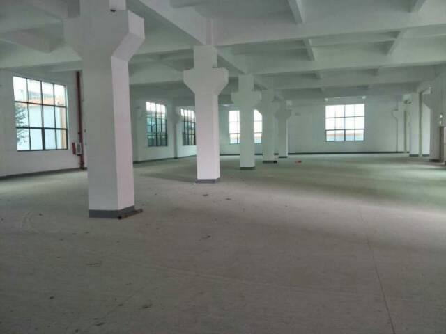 虎门镇全新独门独院厂房三栋每栋6800平方可分栋出租