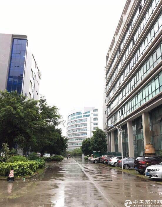 深圳市坪山新区低价出售5000元一平米左右