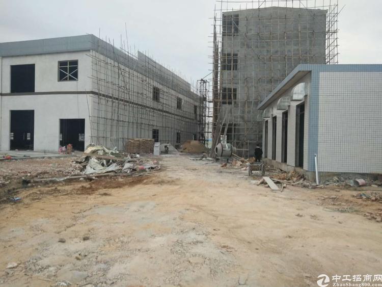 清溪三中经典全新主干道12800平独院出租