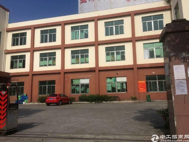 平湖华南边上新出一楼1200平方厂房招租