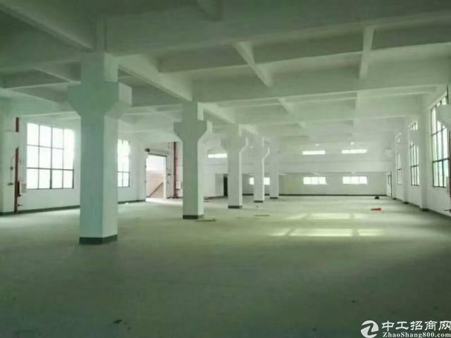 惠州新圩新出独院厂房12000平方-图3