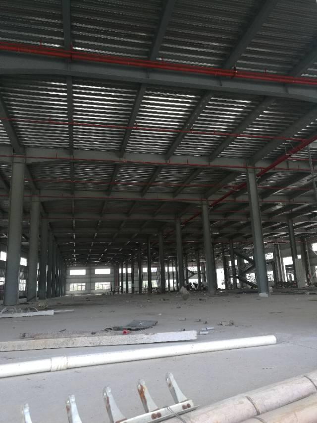 麻涌靠道滘全新厂房5000平方可以分租滴水12米价格实惠