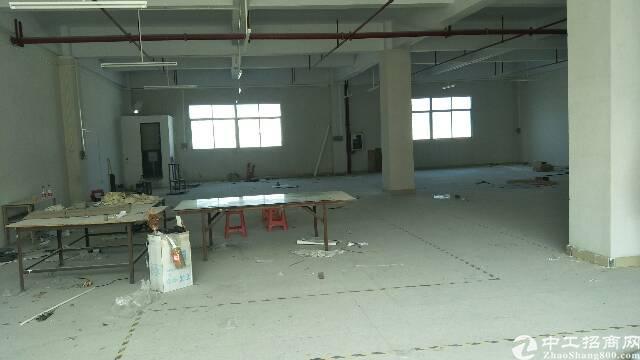 坪山600平独院标准厂房带装修现成水电-图2