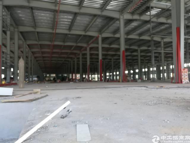 全新钢结构厂房单一层20000平方可以分租滴水13米