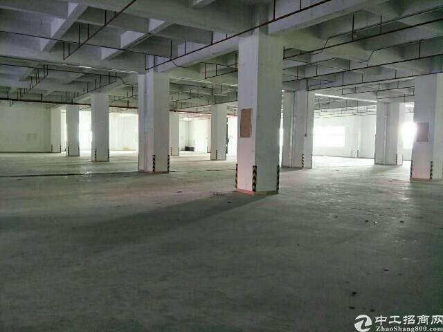 沙井松岗107潭头大型工业园1600平方一楼招租
