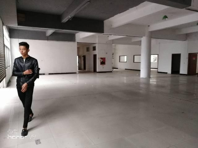 松岗高速出口附近新出一楼带装修厂房780平米出租