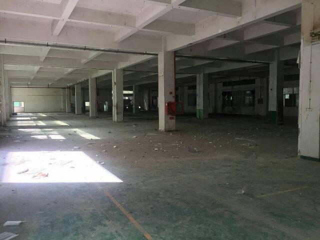 一楼带行车标准厂房出租-图5