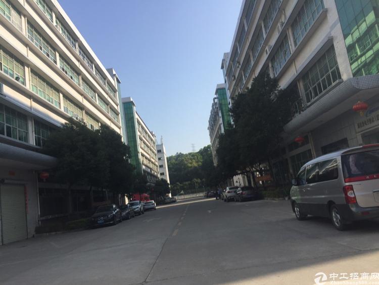 原房东厂房出租1650平米-图2