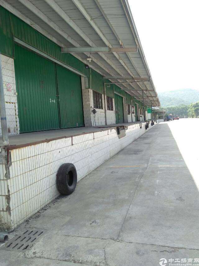 清溪镇钢结构厂房一楼4500平米