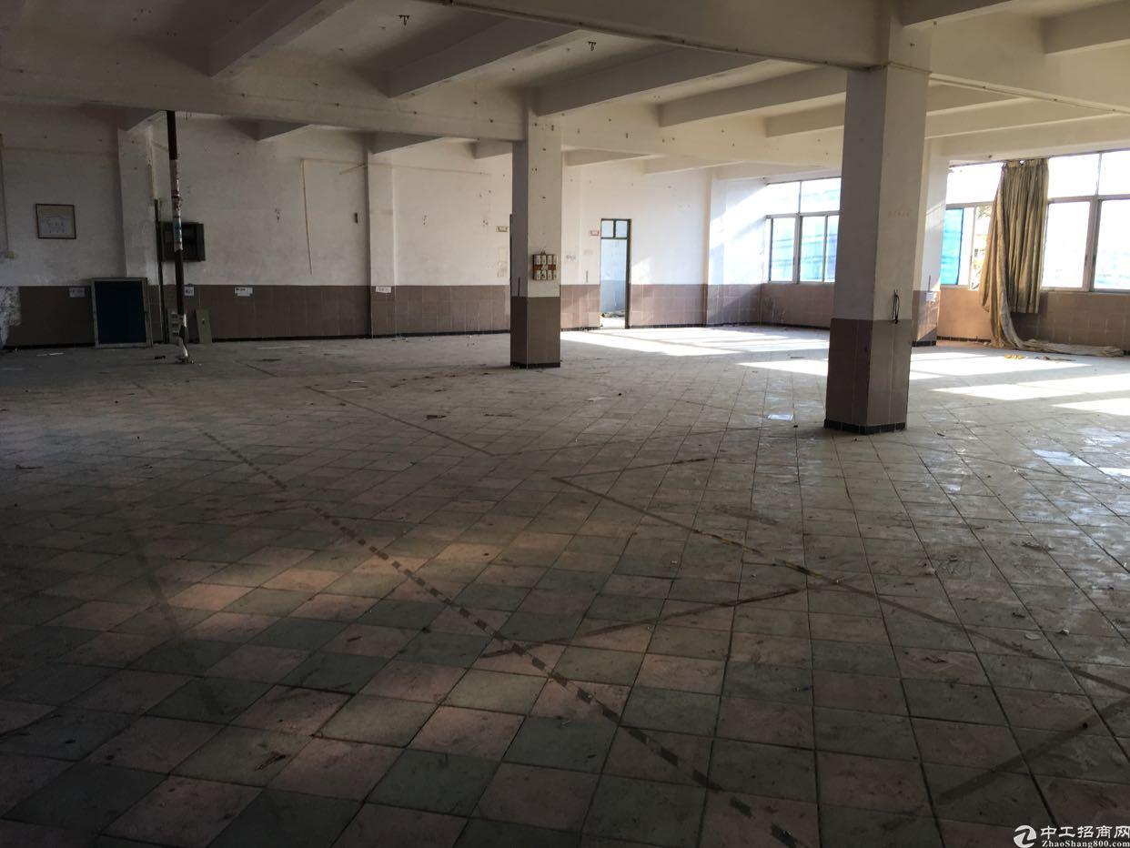 黄江镇中心新出独院标准厂房,靠路边,交通便利!