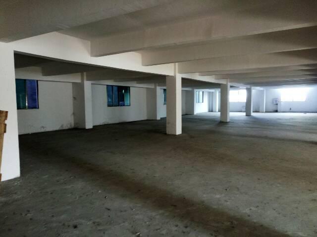 新塘标准厂房单层1200平方租10块一平