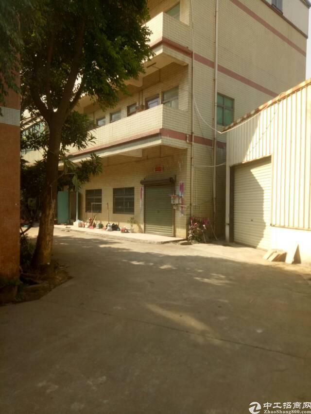 惠州新圩东风村原房东独院钢构,价格优惠