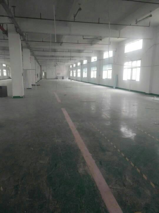 大岭山原房东分租二楼实际面积1700平方出租-图5