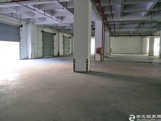 福永107国道边高新园区楼上6100平米厂房出租-图4