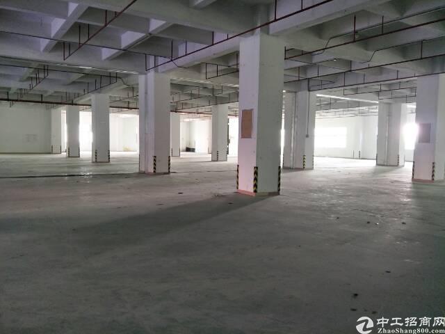 福永107国道边高新园区楼上6100平米厂房出租-图3