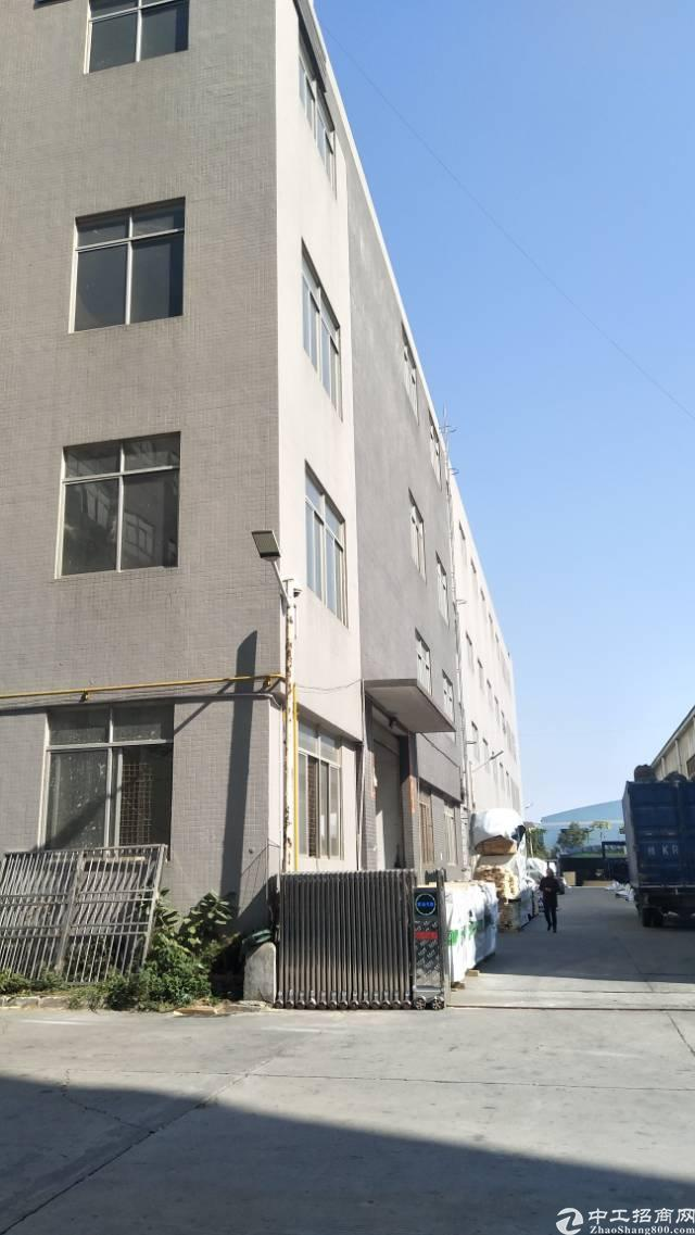 107国道边  23米高单一层厂房1000平招租