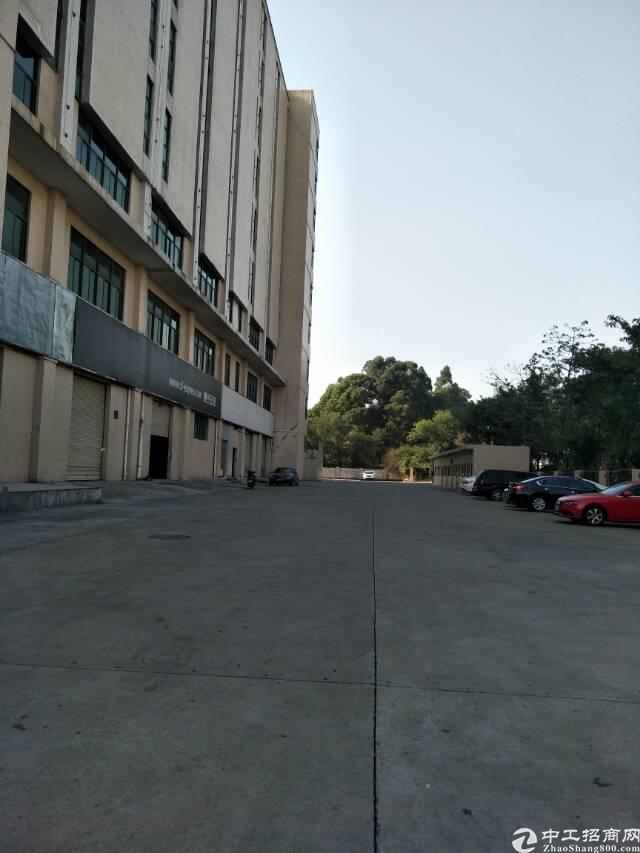 福永107国道边高新园区楼上6100平米厂房出租