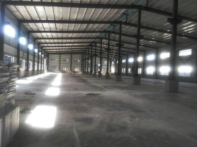 出租全新钢构厂房