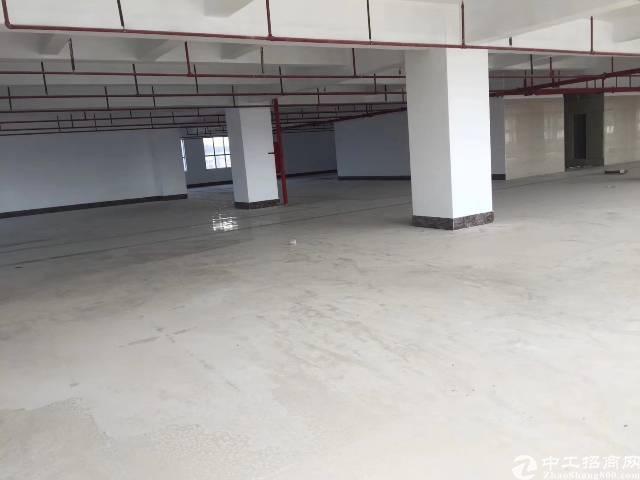 布吉上李朗新出全新47000平米厂房出租-图4