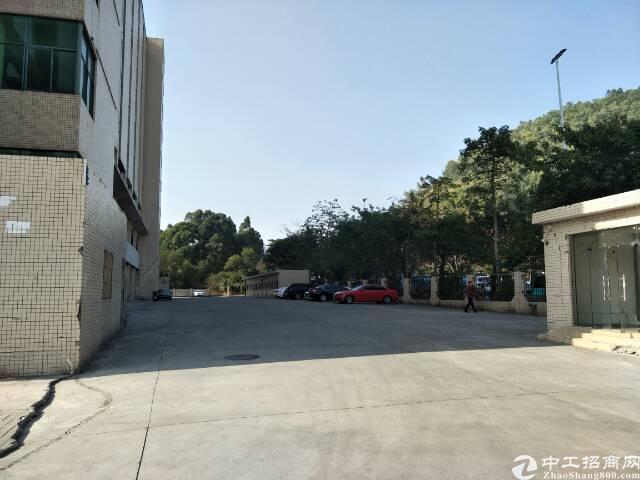 福永107国道边高新园区楼上6100平米厂房出租-图2