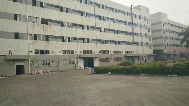 沙井宝安大道附近一楼厂房出租-图4