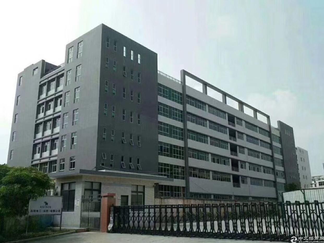 黄江镇新出全新标准厂房,水电齐全,楼上滴水4.5米