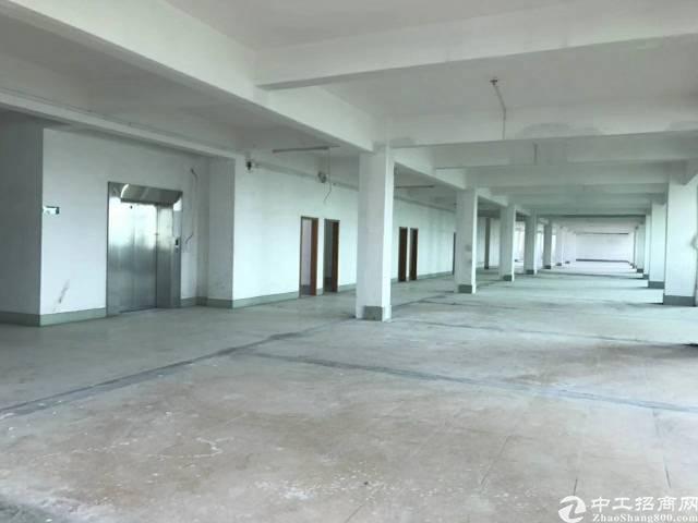 广州可明包九成新厂房近5万平米,价格实惠-图4