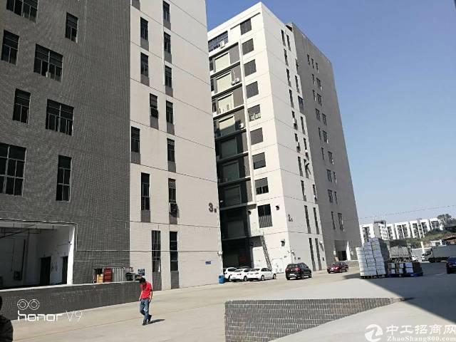 沙井共和新村楼上整层3000平方带装修厂房出租。