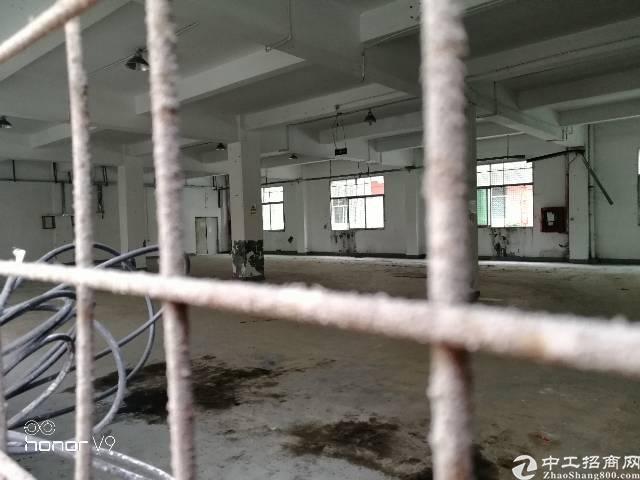观澜中心地带新出一楼厂房-图5