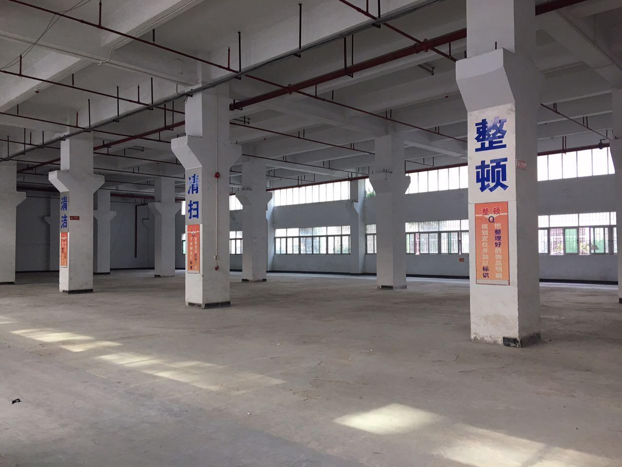 龙华大型工业园一楼2500平米,带牛角,一楼高度6.8米