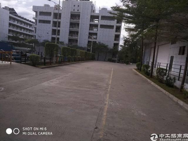 坪山大工业区红本园区招租