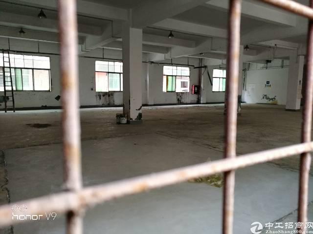 观澜中心地带新出一楼厂房