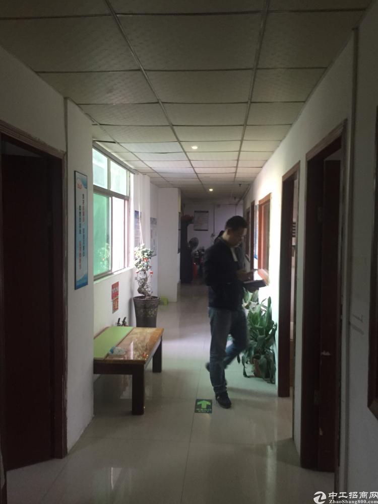 沙井和一福永交界处楼上500平方带精装修低价转让-图4