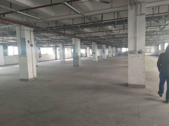 南环路边新出一二楼5000平方厂房出租。
