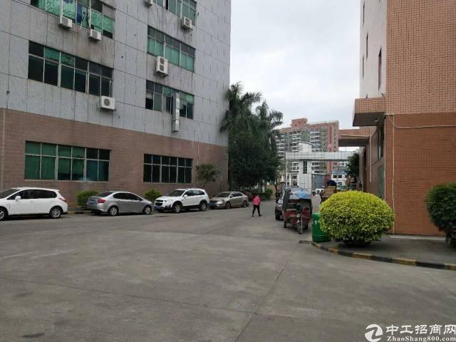 观澜中心地带新出一楼厂房-图4
