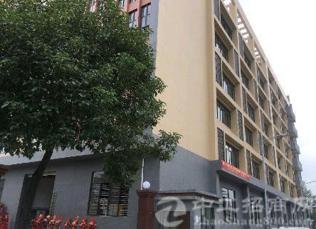 沙井宝安大道边一楼1500平米高6米带牛角精装修-图3