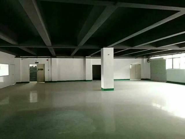 精装修厂房1800平,龙华区龙大高速旁新出创意园
