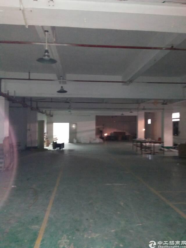 东莞石排镇原房东标准厂房分租-图3